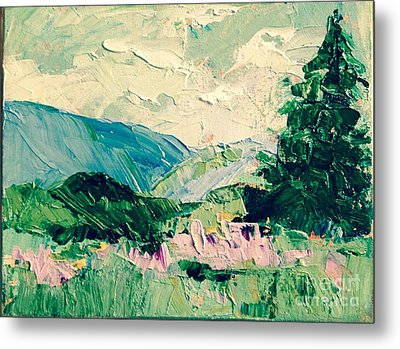 Appalachian Summer Metal Print