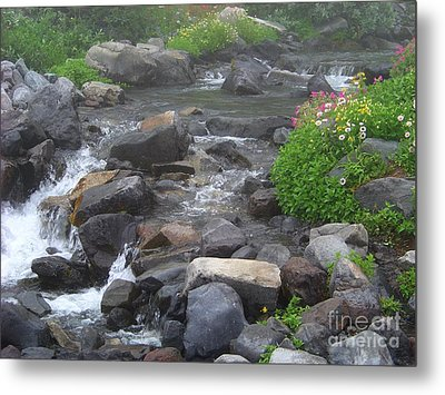 Mountain Stream Metal Print by Charles Robinson