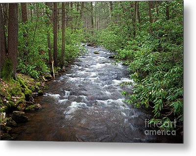 Mountain Stream Laurel Metal Print by John Stephens