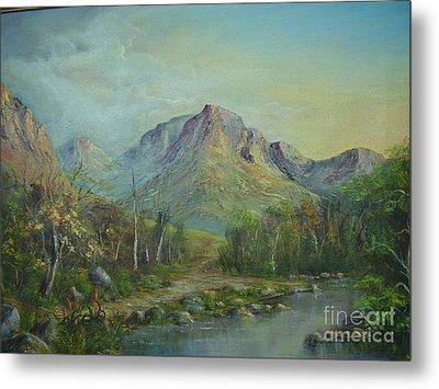 Mountain Stream Metal Print by Rita Palm
