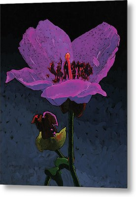 Mountain Wildflower Metal Print