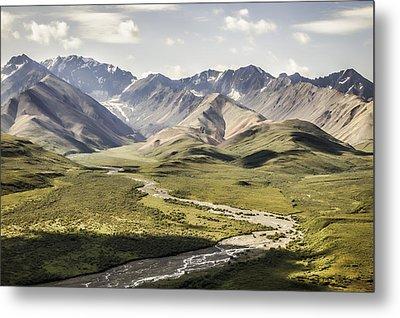 Mountains In Denali National Park Metal Print