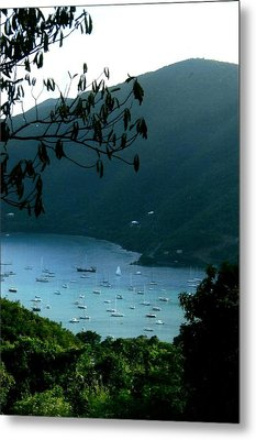Mountainside Coral Bay Metal Print by Robert Nickologianis