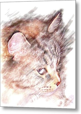 Metal Print featuring the photograph Mouser by Barbara MacPhail