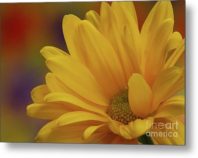 Metal Print featuring the photograph Movement In Yellow by Christine Amstutz