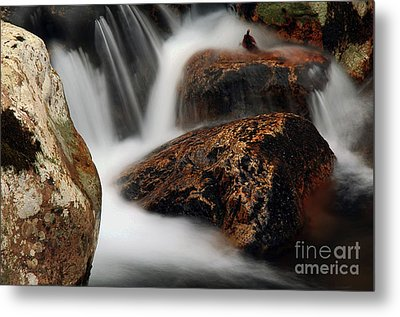 Metal Print featuring the photograph Moving Along by Darren Fisher