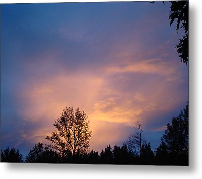 Moving Sunset Metal Print by Lisa Rose Musselwhite