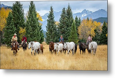 Moving The Herd Metal Print by Jack Bell