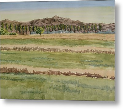 Mown Hay Metal Print by Bethany Lee