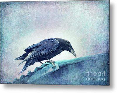 Mr. Bluebird Metal Print by Priska Wettstein