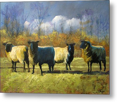 Mr. Shew's Sheep Metal Print by John Reynolds