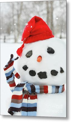 Mr. Snowman Metal Print by Sandra Cunningham