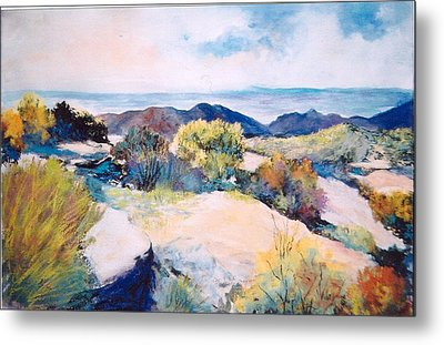 Metal Print featuring the painting Mt Lemmon View by M Diane Bonaparte