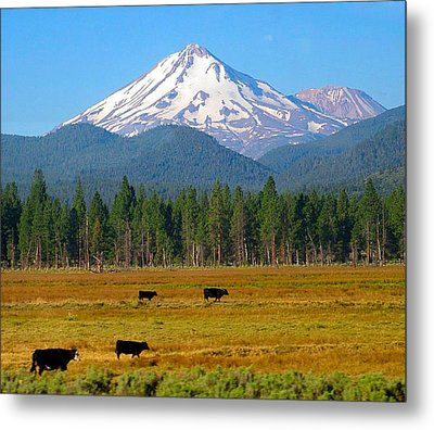 Mt. Shasta Morning Metal Print by Betty Buller Whitehead