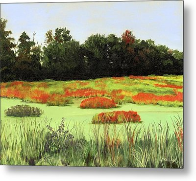 Mud Lake Marsh Metal Print by Lynne Reichhart
