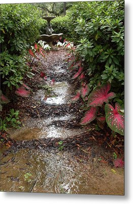 Muddy Fountain Path Metal Print by Warren Thompson