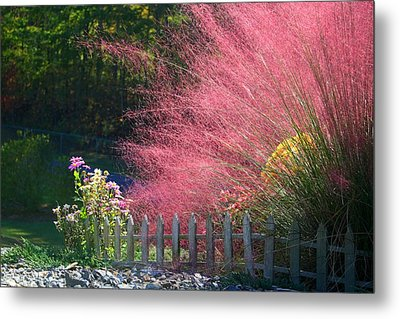 Metal Print featuring the photograph Muhly Grass by Kathryn Meyer