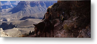 Mule Riders And Hikers On The Trail Metal Print by Panoramic Images