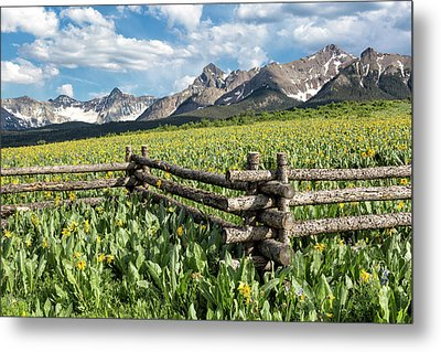 Mule's Ears And Mountains Metal Print