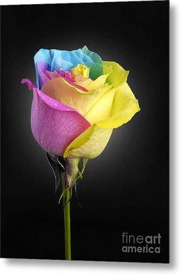 Rainbow Rose 1 Metal Print by Tony Cordoza