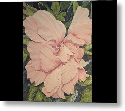 Metal Print featuring the painting Multipetaled Pink Hibiscus by Hilda and Jose Garrancho