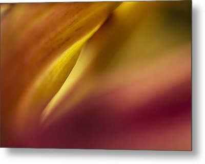 Mum Abstract Metal Print