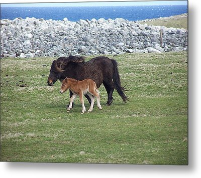 Mum And Daughter On A Windy Day Metal Print by George Leask