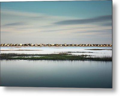 Murrells Inlet Marsh Metal Print by Ivo Kerssemakers