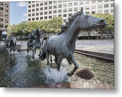 Mustangs Of Las Colinas Sculpture In Irving Texas Metal Print
