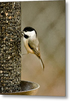 My Favorite Perch Metal Print by Lana Trussell