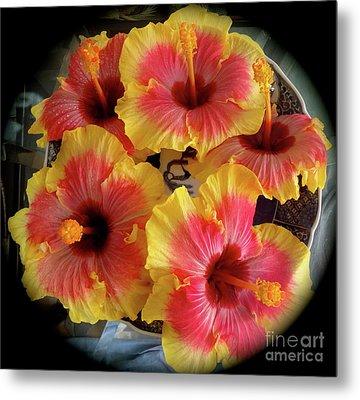 My Hibiscus Garden Metal Print