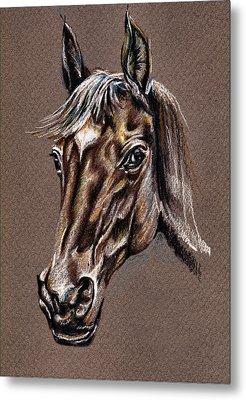 My Horse Portrait Metal Print by Daliana Pacuraru