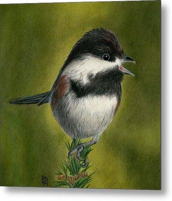 My Little Chickadee Metal Print by Diana Ranstrom