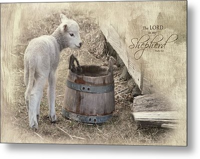 Metal Print featuring the photograph My Shepherd by Robin-Lee Vieira