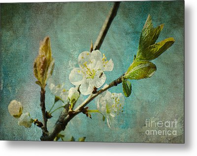 My Springtime Metal Print by Angela Doelling AD DESIGN Photo and PhotoArt