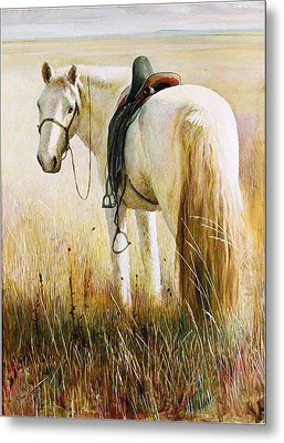 My White Horse  Metal Print