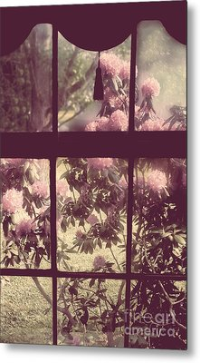 My Window Metal Print by Mindy Sommers