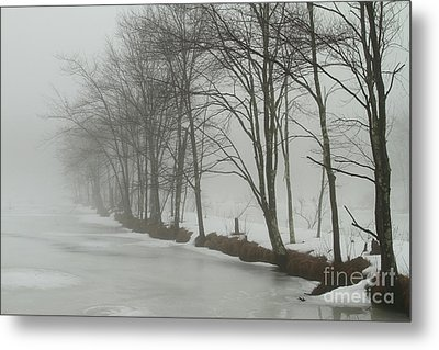 Mysterious Winter  Metal Print by Karol Livote