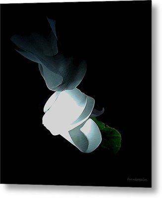 Mystery Flower Metal Print
