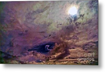 Metal Print featuring the photograph Mystery by Roberta Byram