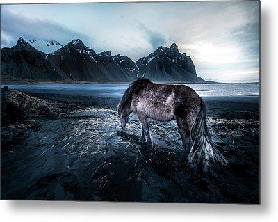 Mystic Icelandic Horse Metal Print
