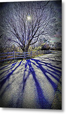 Mystic Shadows Metal Print by Lilia D