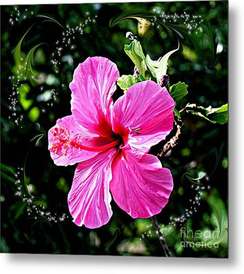 Metal Print featuring the photograph Mystical Bloom by The Art of Alice Terrill