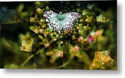Mythical Butterfly  Metal Print