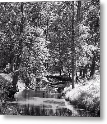 Metal Print featuring the photograph Nadine's Creek In Black And White by Kathy Kelly