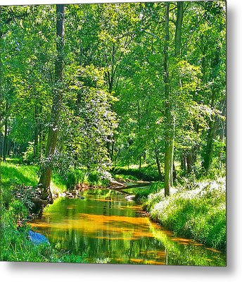 Metal Print featuring the photograph Nadine's Creek by Kathy Kelly