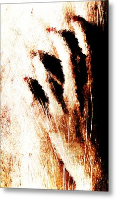 Nails Metal Print by Andrea Barbieri