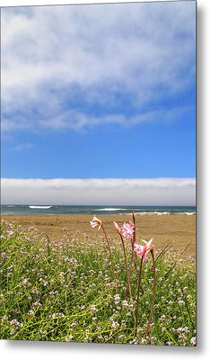 Metal Print featuring the photograph Naked Ladies At The Beach by James Eddy