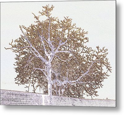 Naked Limbs Metal Print