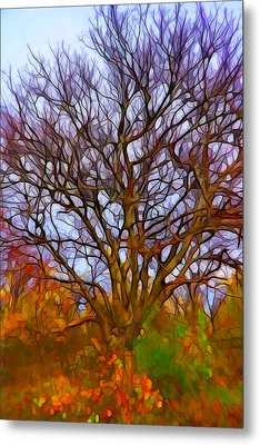 Naked Tree Metal Print by Lilia D